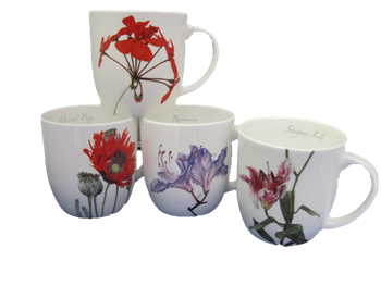 Four Anna Knighty Exotic Mugs